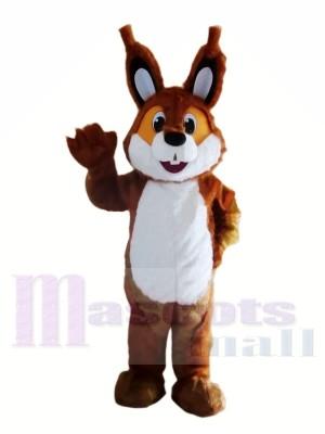 Brown-leichte Eichhörnchen-Maskottchen-Kostüme