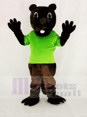 Komisch Braun Barney Biber im Grün Maskottchen Kostüm Karikatur