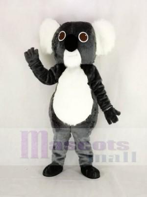 Niedlich Grau Koala Maskottchen Kostüm Karikatur