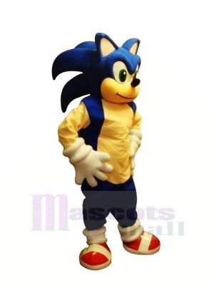 Lustig Sonic Maskottchen Kostüme Karikatur