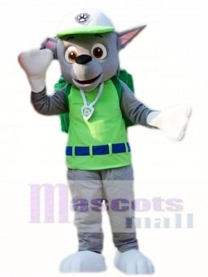 Paw Patrol Rocky Recycling Ökologie Hund Pup Maskottchen Kostüm