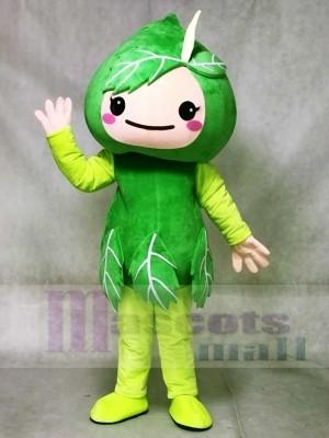 Grün verlässt Maskottchen Kostüm Anlage