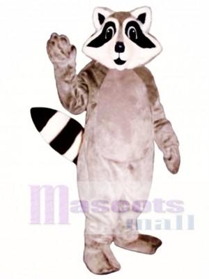 Kleines Waschbär Maskottchen Kostüm Tier