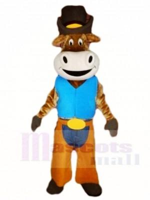 Ochse Das Vieh Cowboy Tier