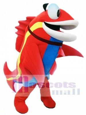 Netter roter Fisch mit blauem Bauch Maskottchen kostüm Fisch Tier