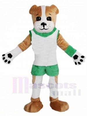 Braun Hund im weißen Weste  Maskottchen Kostüme Tier