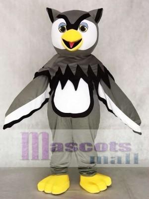 Nettes graues cooles Eulen Maskottchen kostüm Vogel Tier