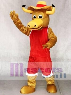 Texas Longhorns Hook'em Sport Stier Maskottchen Kostüme