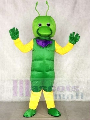 Grünes Wurm Maskottchen kostümiert Insekt