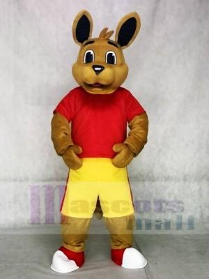 rot Hemd Känguru Maskottchen Kostüme Tier