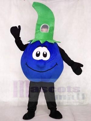 Bobby Blueberry Maskottchen Kostüme Pflanzen Obst