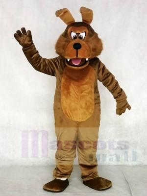 Realistische Kojote Wolf Maskottchen Kostüme Tier