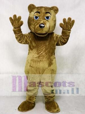 UCLA Dunkelbraun Bär Maskottchen Kostüm