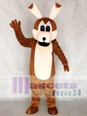 Coyotes Maskottchen Adult Kostüme Tier