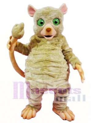 Graue Maus Lemur Affe Maskottchen Kostüme Tier