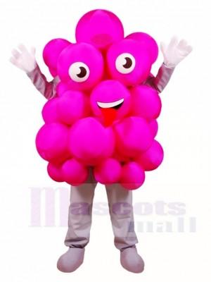 Rosa Trauben Maskottchen Kostüme Obst