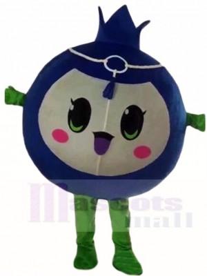 Blaubeer Maskottchen Kostüm Frucht