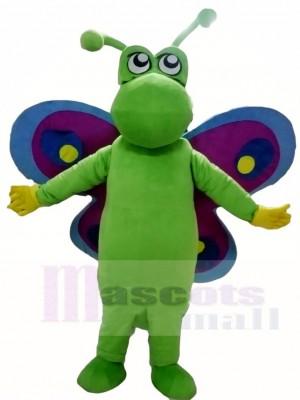 Grüner Schmetterling mit purpurrotem und blauem Flügel Maskottchen Kostüm Insekt