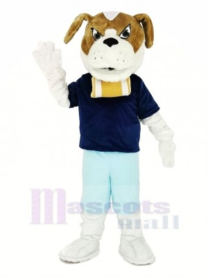 Heilige Bernard Hund mit Blau T-Shirt Maskottchen Kostüm Karikatur