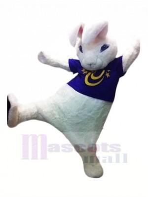 Hoch Qualität Weiß Hase Maskottchen Kostüme