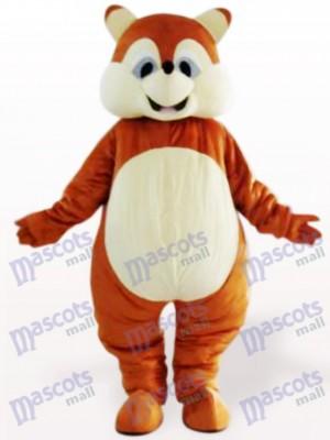 Eichhörnchen Tier Maskottchen Kostüm