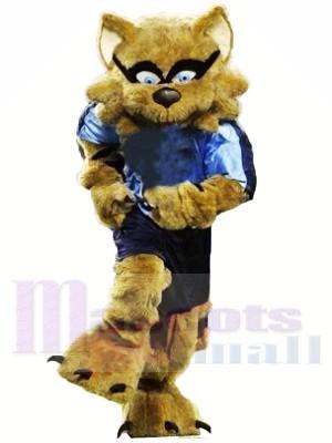 Stark Braun Waschbär Maskottchen Kostüme Tier