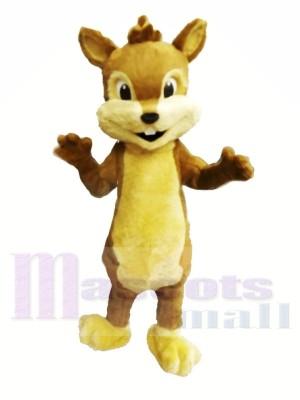 Niedliche pelzige Chipmunk-Maskottchen-Kostüme