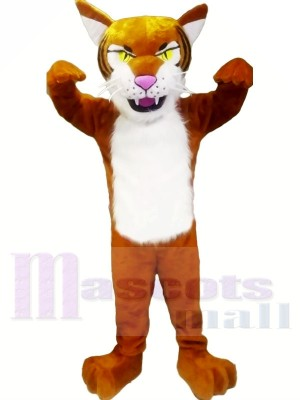 Heftig Leicht Tiger Maskottchen Kostüme