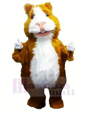 Süß Hamster Maskottchen Kostüme Karikatur