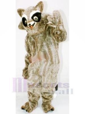 Braun Waschbär Maskottchen Kostüme Billig