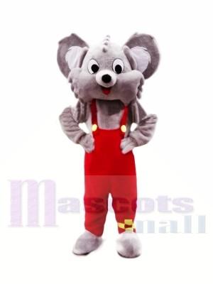 Süß Grau Koala Maskottchen Kostüme