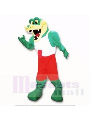 Freundlich Leicht Alligator mit Rot und weiß Hemd Maskottchen Kostüme Schule