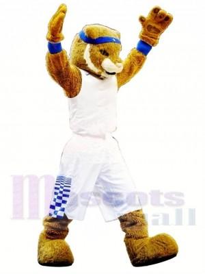 Hochschulsport Wildkatze Maskottchen Kostüm Kostenloser Versand