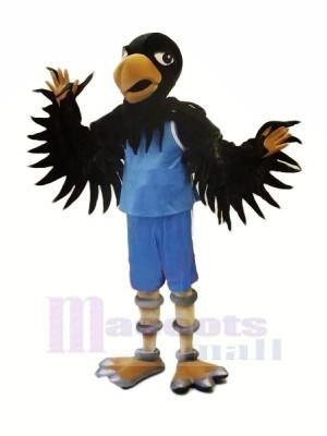 Schwarz Falke mit Blau Passen Maskottchen Kostüme Tier