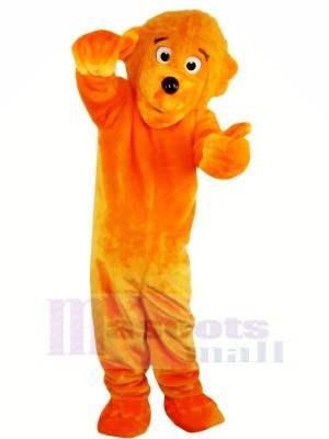 Lustig Löwe Maskottchen Kostüme