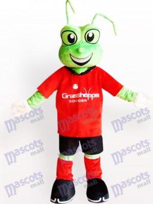 Grüner Frosch Maskottchen Kostüm