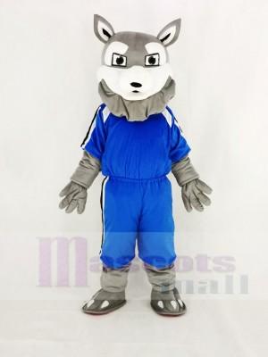 Leistung Grau Heiser Hund im Blau Maskottchen Kostüm Karikatur