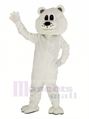 Niedlich Weiß Bär Maskottchen Kostüm Erwachsene