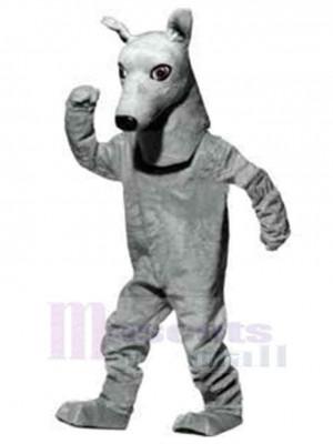 Intelligenter Windhund-Hund Maskottchen Kostüm Tier