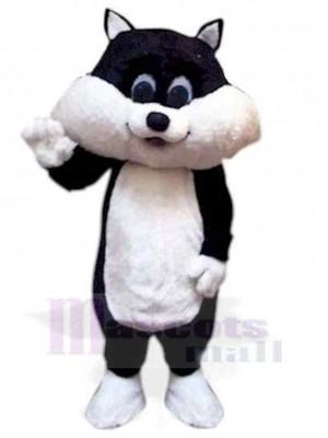 Schönes Schwarz und Weiß Kätzchen Katze Maskottchen Kostüm Tier