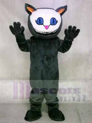 Cheshire Katze aus Alices Abenteuer im Wunderland Maskottchen Kostüme