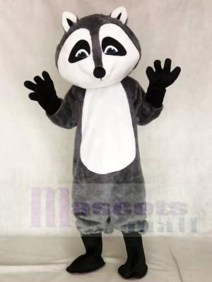 Waschbär Maskottchen Kostüme Tier