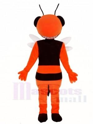 Hornisse Biene Maskottchen Kostüme Insekt