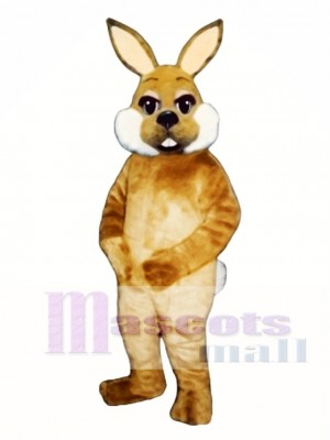 Nettes Ostern Braun Hase Kaninchen Maskottchen Kostüm Tier