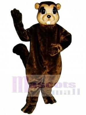 Susie Eichhörnchen Maskottchen Kostüm