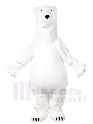 Weiß Eisbär Maskottchen Kostüme Tier