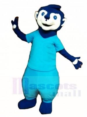 Blaues Meerkat Tier