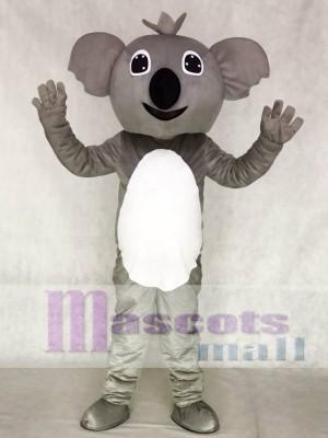 Koala Maskottchen lustiges entzückendes reizendes Kostüm