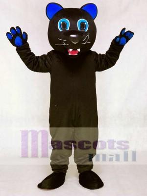 Sir Purr mit königlich Blau Ohren Maskottchen Kostüm der Carolina Panthers