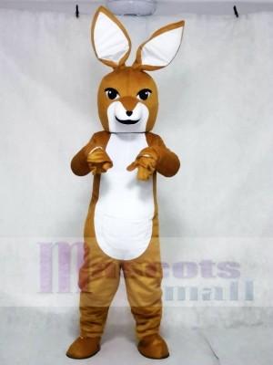 Känguru mit Joey Maskottchen Kostüme Tier